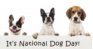 National-National-Dog-Day-26th-August